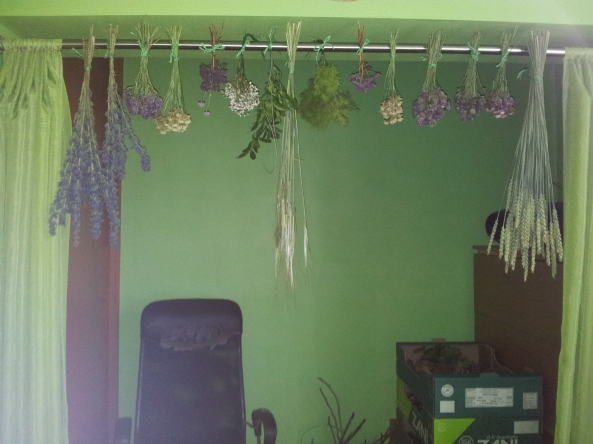 Drying the leaves and flowers in the other bedroom.